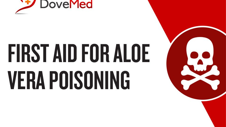 First Aid for Aloe Vera Poisoning