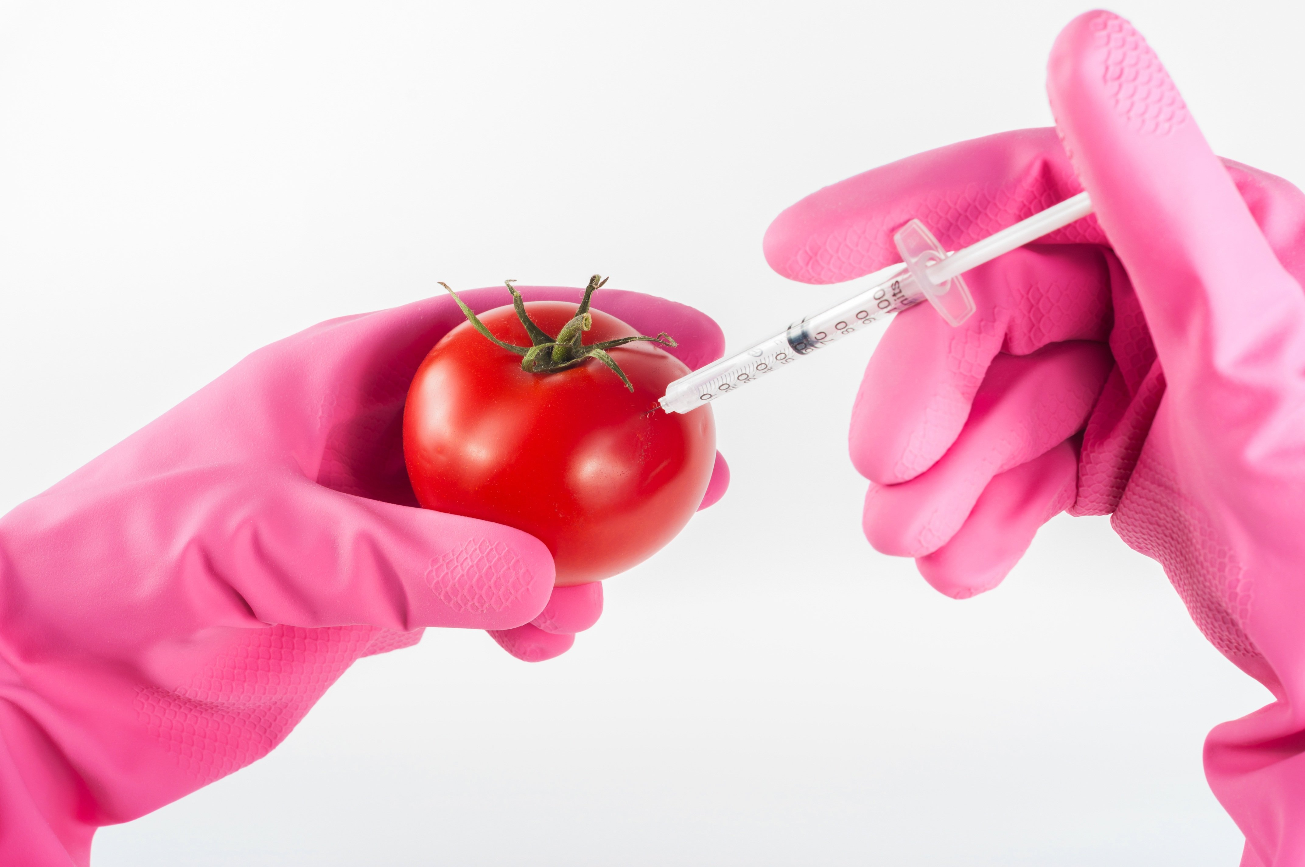 are genetically modified foods safe to Food crops have been genetically modified for several reasons—most of which produce a financial benefit to farmers and the chemical companies that produce the gmos.